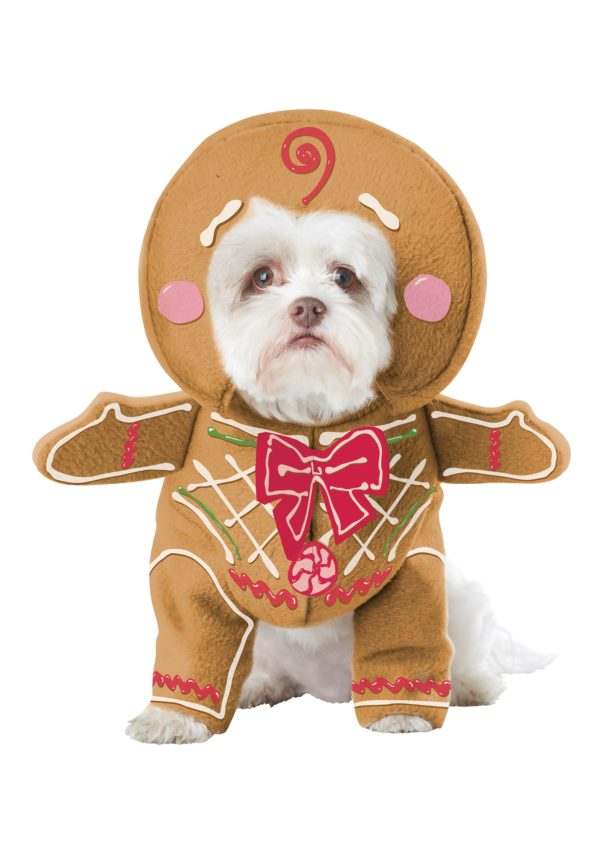 Gingerbread Pup Dog Fancy Dress Costume