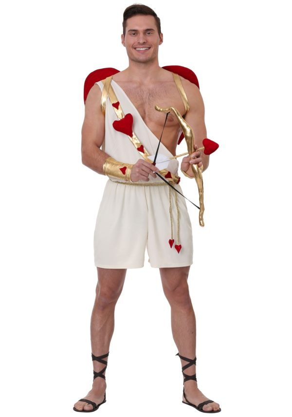 Cupid Fancy Dress Costume for Men
